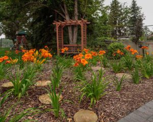 Low Maintenance Landscaping Edmonton
