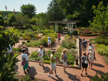 Depending On What Category You Are Competing In, The Judges Also Look At  Design, Four State Botanical Garden Tours
