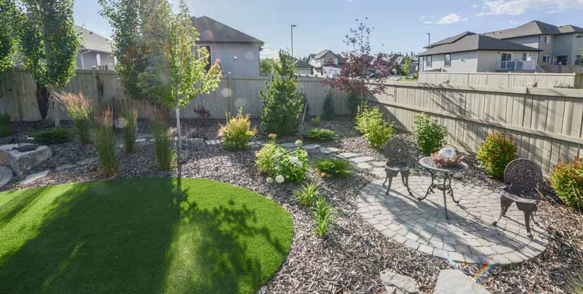 Backyard with xeriscaping, round patio and trees