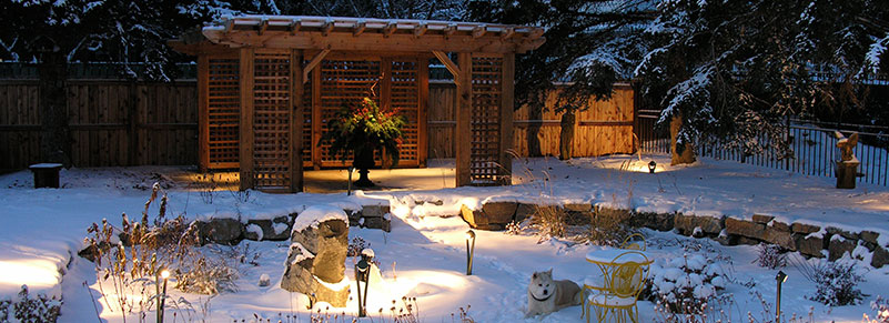 Backyard lighting at night in the winter