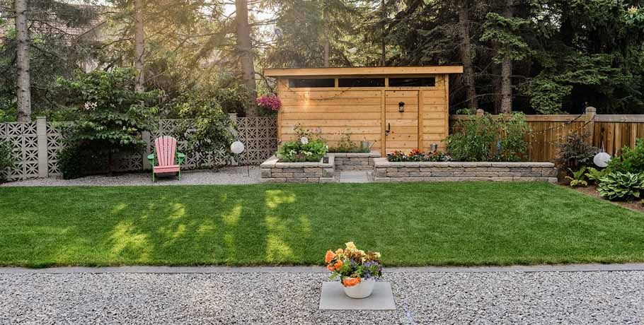 Backyard with outdoor shed and sunlight