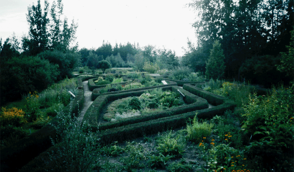 University of Alberta Herb Garden Designed by Kevin Napora