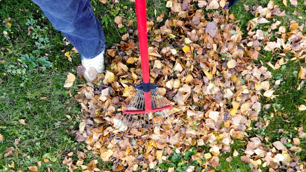 your checklist for fall yard cleanup - salisbury landscaping