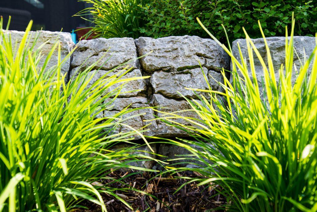 Bacchus Landscape Design by Andreas Lietz of Salisbury Landscaping