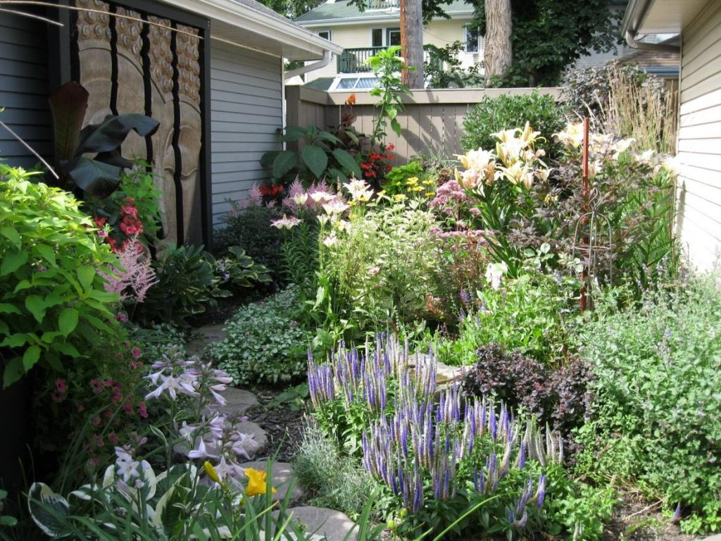 maintaining your perennials
