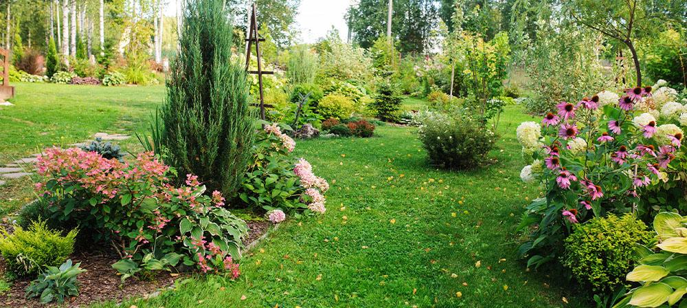 rustic landscape garden